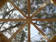 charpente toit en verre dessous